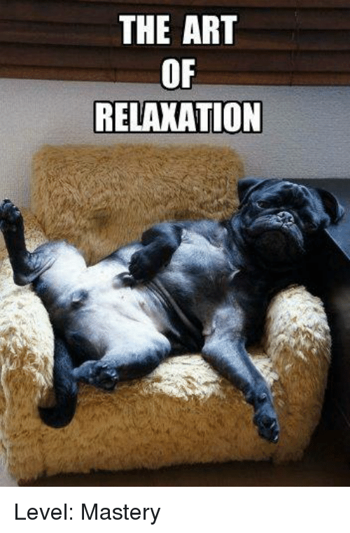 the-art-of-relaxation-level-mastery-12834487